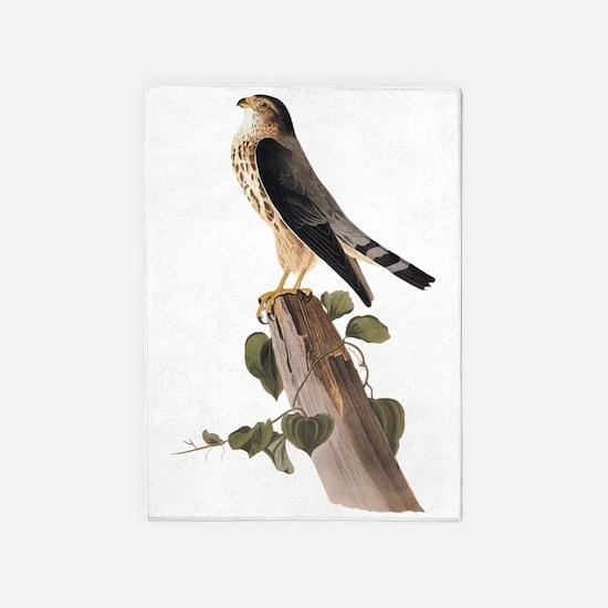 Merlin Falcon Audubon Vintage Art 5'x7'Area Rug