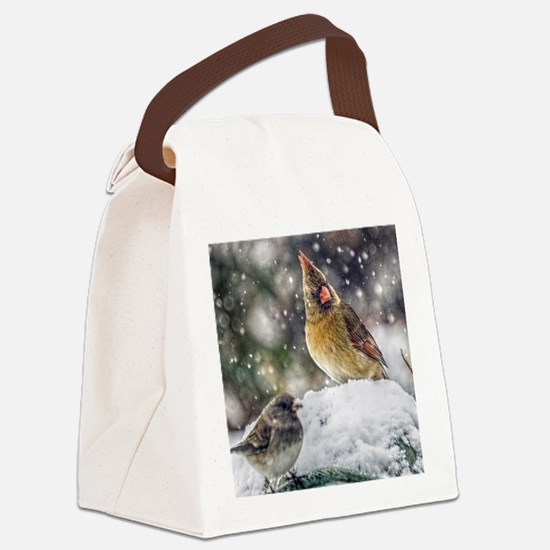 I've Got my Eye on You! Canvas Lunch Bag