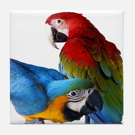 2 Macaws Tile Coaster