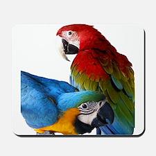 2 Macaws Mousepad