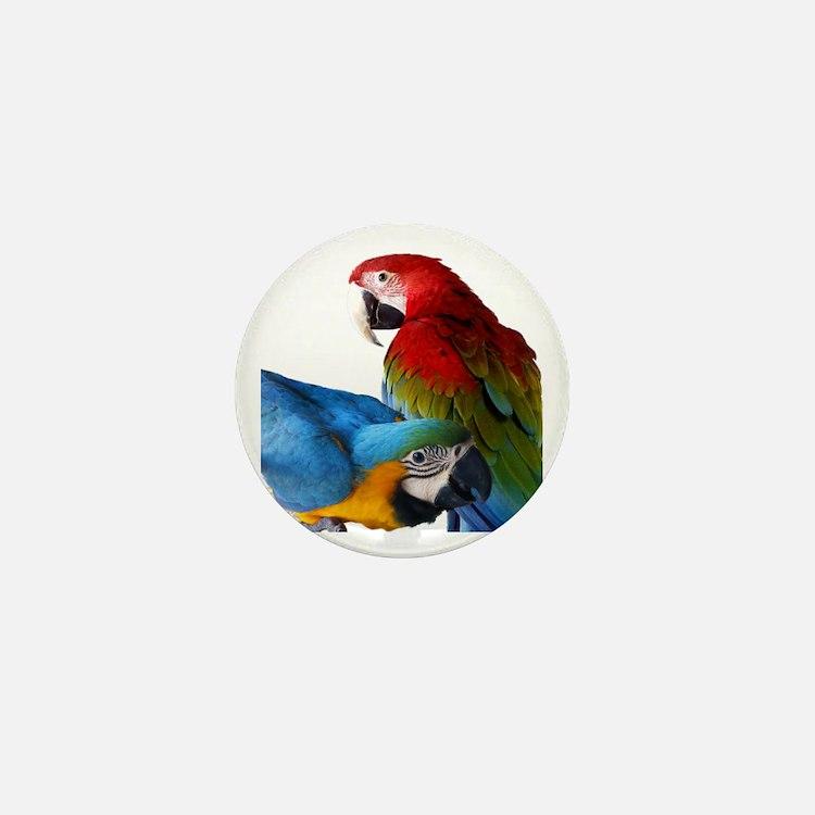 2 Macaws Mini Button