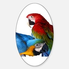 2 Macaws Decal