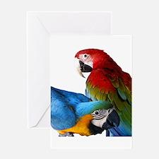 2 Macaws Greeting Card