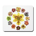 Daylily Time Mousepad