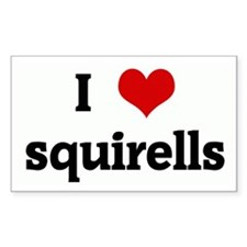 I Love squirells Rectangle Decal