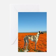 Cute Sloughis Greeting Cards (Pk of 10)