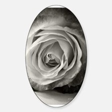 Another Rose Decal
