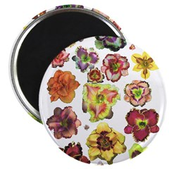 Assorted Daylilies Magnet
