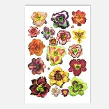 Assorted Daylilies Postcards (Package of 8)