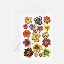 Assorted Daylilies Greeting Card