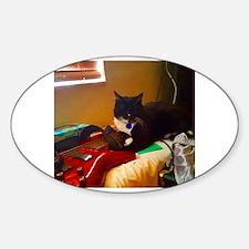 Cool Bass cat Decal