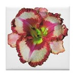 Red Ruffled Daylily Tile Coaster