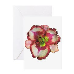 Red Ruffled Daylily Greeting Card