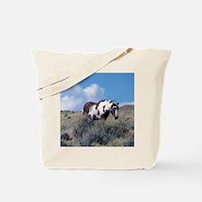 Picasso, Mascot of Sand Wash Basin Tote Bag