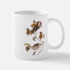 Wood Thrush Birds Vintage Audubon Mugs