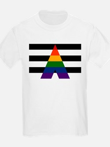 Solid LGBT Ally Pride Flag T-Shirt
