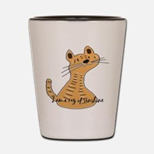 Cute cat is a ray of sunshine Shot Glass