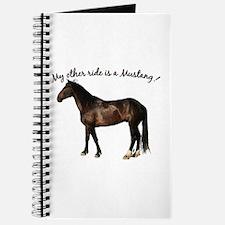 Mustang Coal Journal