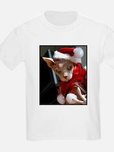 Cute Hairless cat T-Shirt