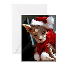 xmas_cat Greeting Cards