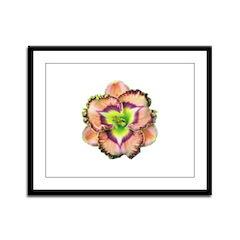 Lavender Pink Daylily Framed Panel Print