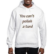 You can't polish a turd Hoodie