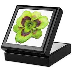 Gold w/ Purple Eye Daylily Keepsake Box