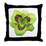 Gold w/ Purple Eye Daylily Throw Pillow
