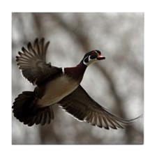 Wood Duck Tile Coaster