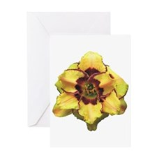 Peach Double Daylily Greeting Card