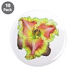 Pink w/ Ruffles Daylily 3.5