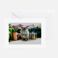Cute rabbit & gifts Greeting Cards