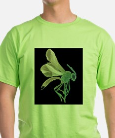 Female parasitoid wasp, Women's Cap Sleeve T-Shirt
