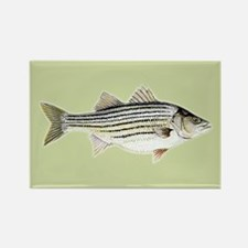 Striper Rectangle Magnet