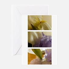 Irises Greeting Cards