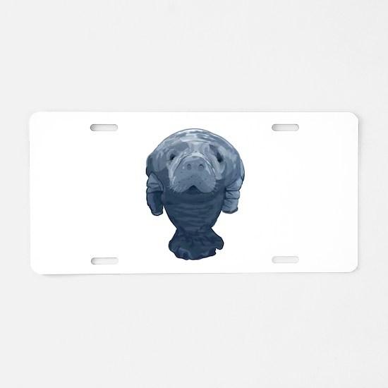 CURIOUS Aluminum License Plate