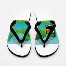 Big Fish Flip Flops