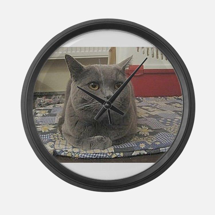 british shorthair gray Large Wall Clock