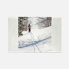 Lone Cross Country Skier Magnets