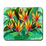 Bird of paradise Classic Mousepad