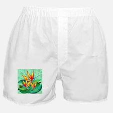 Bird of Paradise Flower Exotic Nature Boxer Shorts