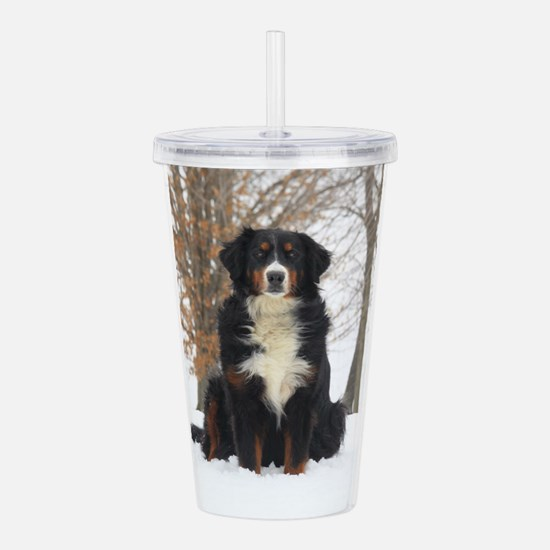 Berner in Snow Acrylic Double-wall Tumbler