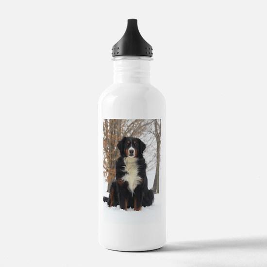 Berner in Snow Water Bottle