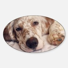 Cute Let dog in let dog out Decal
