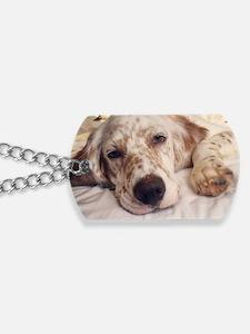 Unique English setter Dog Tags