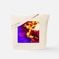 Palm Tree Sunburst Tote Bag