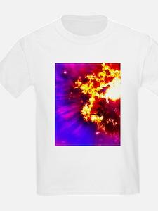 Palm Tree Sunburst T-Shirt