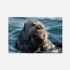 Sea Otters Swimming Magnets