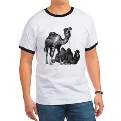 Camels T