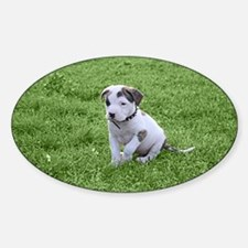 Pit Bull T-Bone Puppy Decal